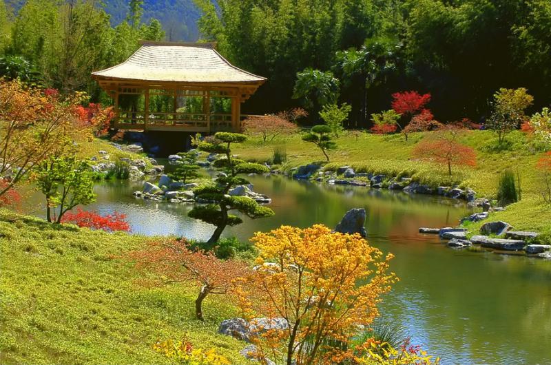 parc le jardin de la bambouseraie de prafrance park ales. Black Bedroom Furniture Sets. Home Design Ideas