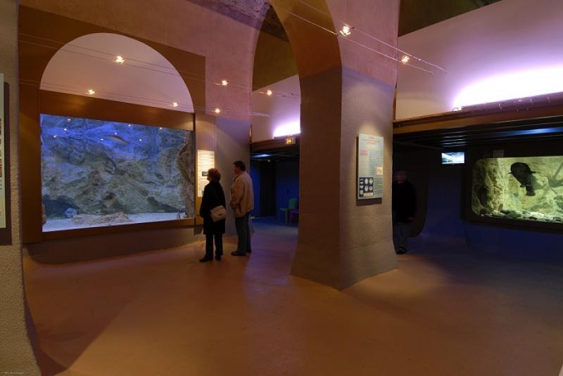Aquarium Du Limousin Park Limoges
