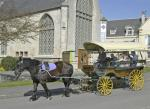 horse-drawn-carriage-trip-around-town