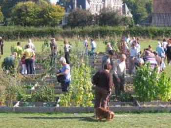 the-vegetable-garden-of-beaumesnil