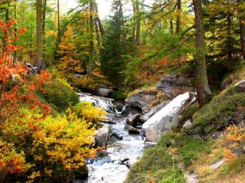 discover-the-national-park-of-mercantour