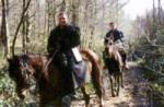 the-piste-verte-horse-riding-trip