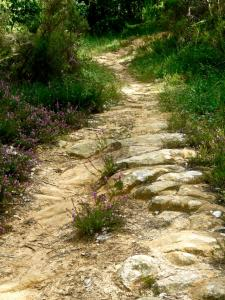 the-vieilles-pierres-path