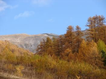 fall-colors-in-les-orres