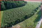 discover-vegetable-labyrinth