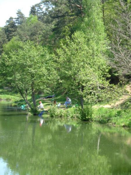 the-fishing-in-saint-martin-en-haut
