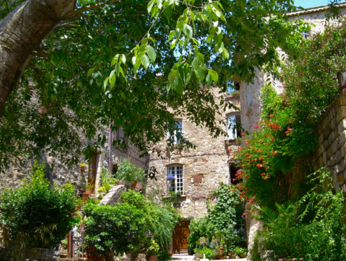 wine-courses-at-the-maison-des-cotes-de-provence-wines